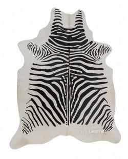 Zebra Africa fundo Branco