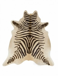 Zebra Chocolate fundo Bege